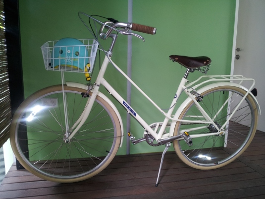 my beautiful papillionaire bicycle